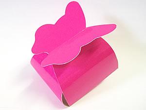 PB-1 Caixa Borboleta Lisa Pink