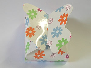 PB-1 Caixa Borboleta Flor