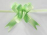 Laço Pequeno Verde Claro Raio