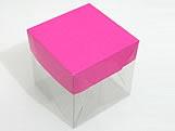 PMB-4 Lisa Pink