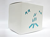 DV-11 Fogueira com Forro Azul Turquesa / Tiffany