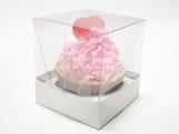 Caixa de Acetato Caixa para 1 Mini Cupcake Combo-1