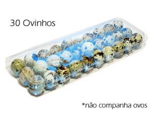 Caixa 30 Ovos de Codorna, Medidas: 28.5 x 9.5 x 4 cm