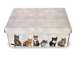 Caixa Organizadora Pequena Gatos, Medidas: 35 X 25 X 14 cm